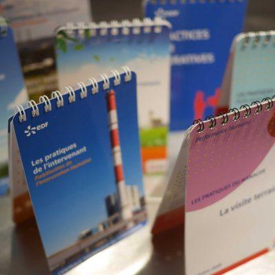 EDF : Edition (pratiques de l'intervenant & du manager)