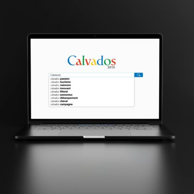 CONSEIL DEPARTEMENTAL DU CALVADOS conception campagne & déclinaisons (édition & digital)